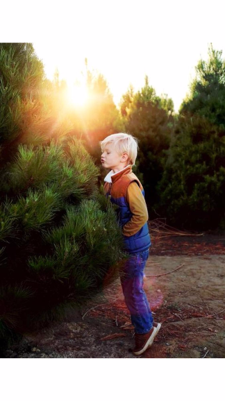 Peltzer Pines Live Christmas Tree Farm Boy kissing christmas tree photo